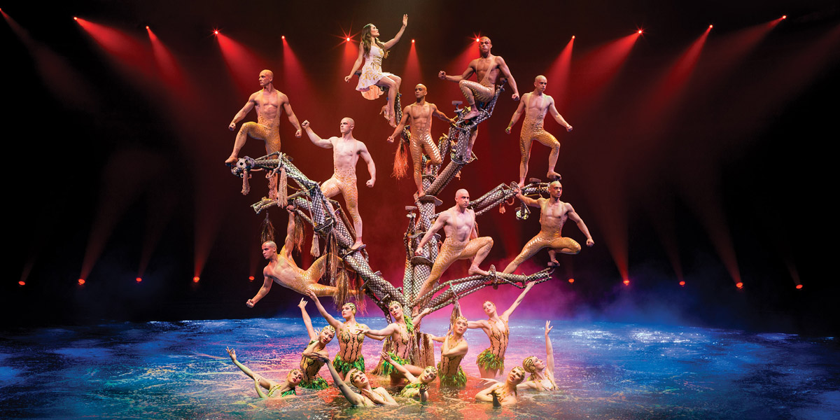 Le reve discount tickets coupons