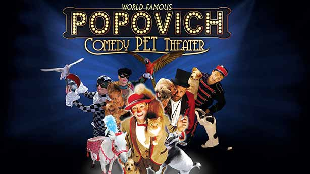 Popovich Comedy Pet Theater Las Vegas 5