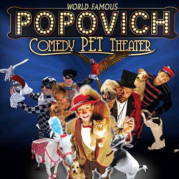 Popovich Comedy Pet Theater Las Vegas 7