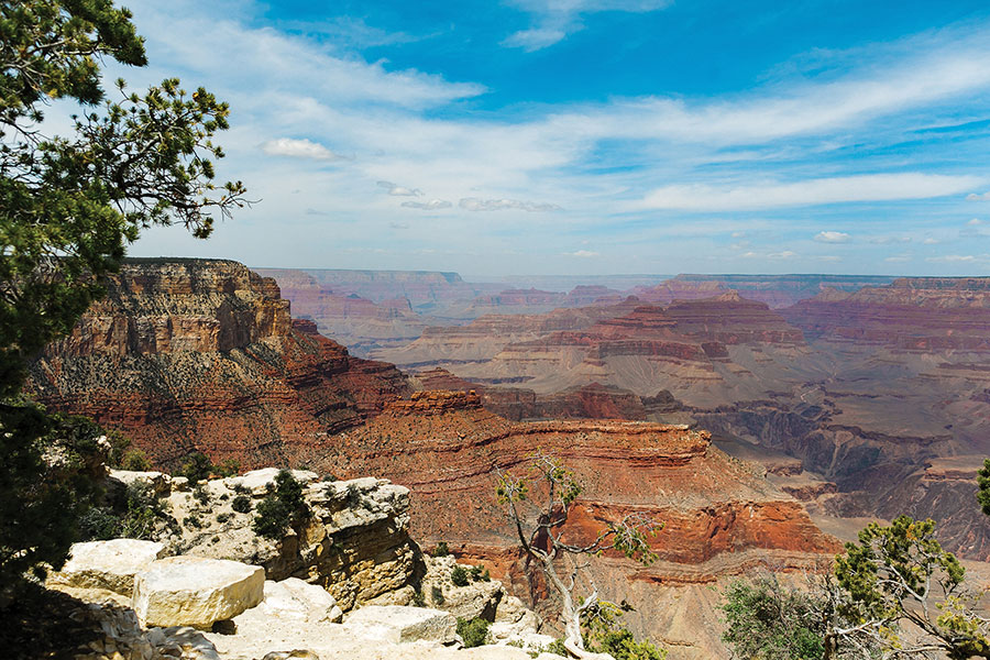 Las Vegas to Grand Canyon South Rim by Bus with Buck Wild Adventure 8